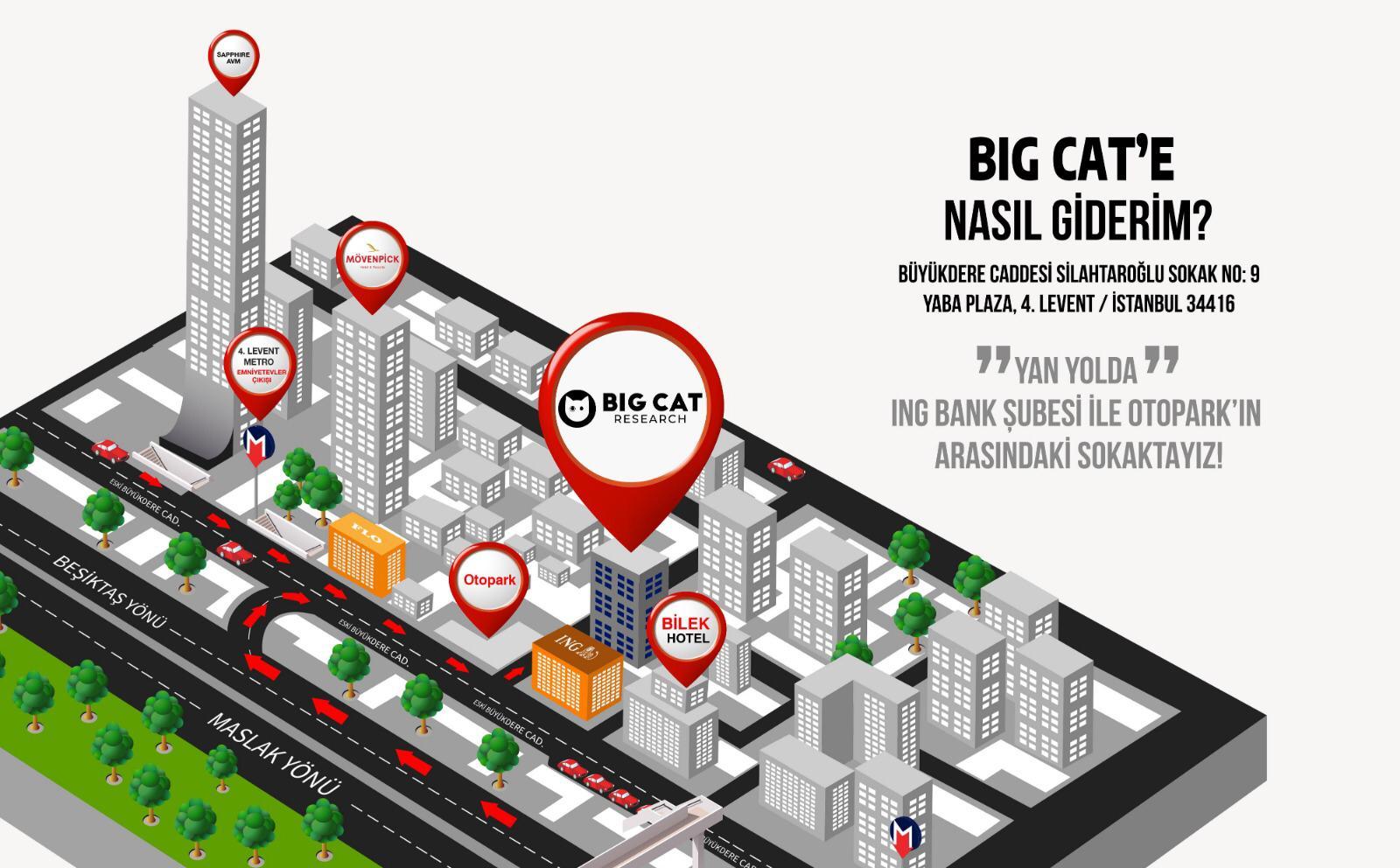 Big Cat Research'e nasıl gidilir